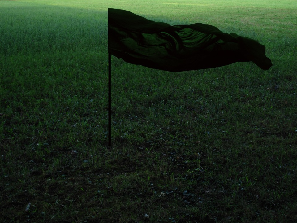 Black and Green2